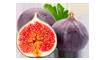 O Extrato de Figo tem é antioxidante, regenerador e nutritivo.